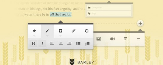 Barley for WordPress is a simple and effective inline editor