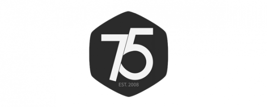 Press75, one of the oldest WordPress theme shops, is for sale