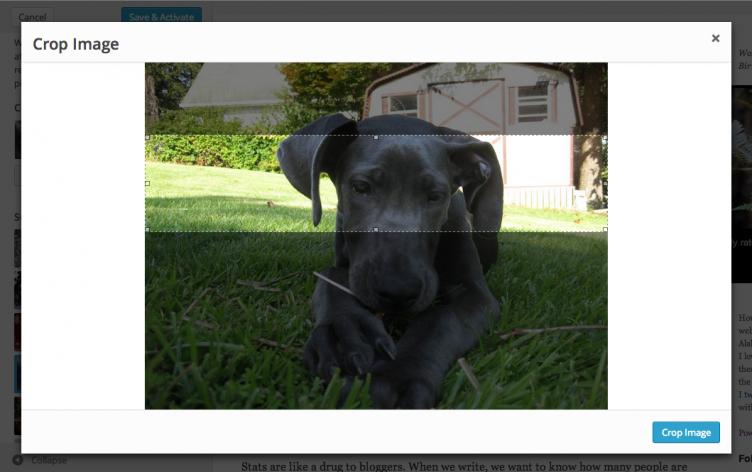 wp39-header-images