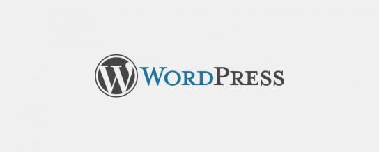 WordPress lead developer changes