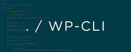 Understanding WP-CLI and a discussion on micro plugin businesses -- Draft podcast