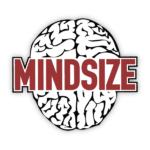 Mindsize