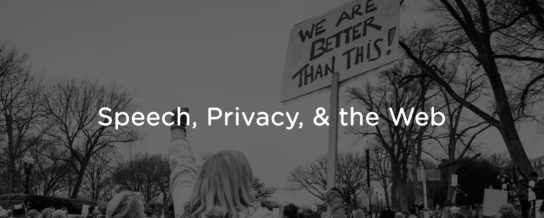 Free speech, privacy, and the web