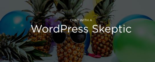 Chat with a WordPress skeptic